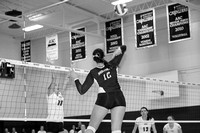 Volleyball vs Tennessee Wesleyan 10-30-15